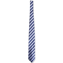 Chelsea Poly Striped Tie