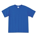 Champion Youth Double Dry Performance T-Shirt (Royal)
