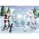Soccer Ball Ice Sculpture Card