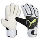 PUMA Powercat 3.12 Protect Goalkeeper Gloves
