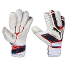 PUMA evoPOWER Protect 1 Goalkeeper Glove
