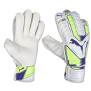 PUMA evoPOWER Protect 3 Goalkeeper Glove
