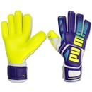 PUMA evoSPEED 3.3 Goalkeeper Glove