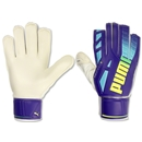 PUMA evoSPEED 5.3 Goalkeeper Glove