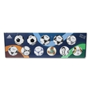 adidas FIFA World Cup Historical Mini Ball Collection (1970-2010)