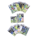 Seattle Sounders FC 2013 Team Card Set