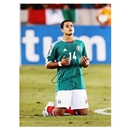 Icons Javier Hernandez Signed Mexico Photo
