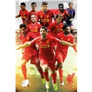 Liverpool 13/14 Players Poster