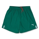 PUMA Lyon Soccer Shorts (Dark Green)