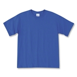 Champion Men's Double Dry Performance T-Shirt (Royal)