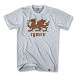 Wales Dragon Soccer T-Shirt