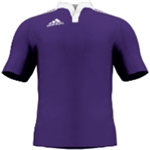 miadidas Union Basic TF Custom Jersey (Purple-Set of 22)