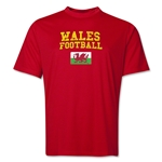 Wales Football Training T-Shirt (Red)