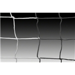 Kwik Goal Evolution Net