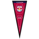 New York Red Bulls Frame Pennant