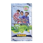 Panini Road to Brasil 2014 FIFA World Cup Brazil(TM) Trading Cards
