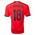 Mexico 2014 A. GUARDADO Away Soccer Jersey