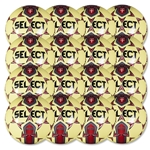 Select Club Training Ball 16 Pack (Yellow/Red)