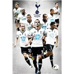 Tottenham 13/14 Players Poster