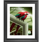 Manaus 2014 FIFA World Cup Host City Framed Print