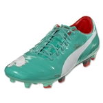 Puma evoPower 1 FG (Pool Green/White/Grenadine/Turbulence)