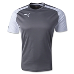 PUMA Speed Jersey (Gray)