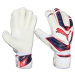 PUMA evoPOWER Protect 2 GC Glove