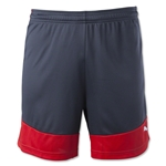PUMA IT evoTRG Shorts 15 (Blk/Red)