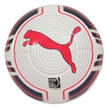 PUMA evoPOWER 2 15 Match Ball