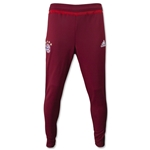 Bayern Munich Training Pant