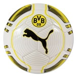 Borussia Dortmund evoPOWER 6 Trainer Ball