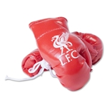 Liverpool Boxing Glove Car Hanger