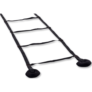 Veloce 10' Weighted Ladder