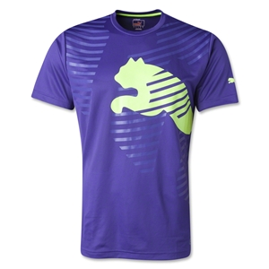 PUMA IT evoTRG Graphic T-Shirt (Pu/Yl)