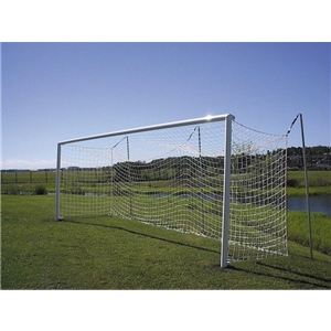 Pevo World Cup w/ Net Posts