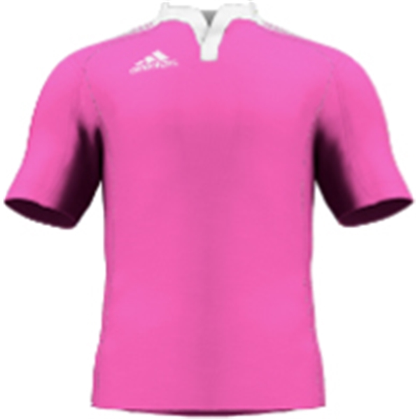 miadidas Union Basic TF Custom Jersey (Pink-Set of 22)