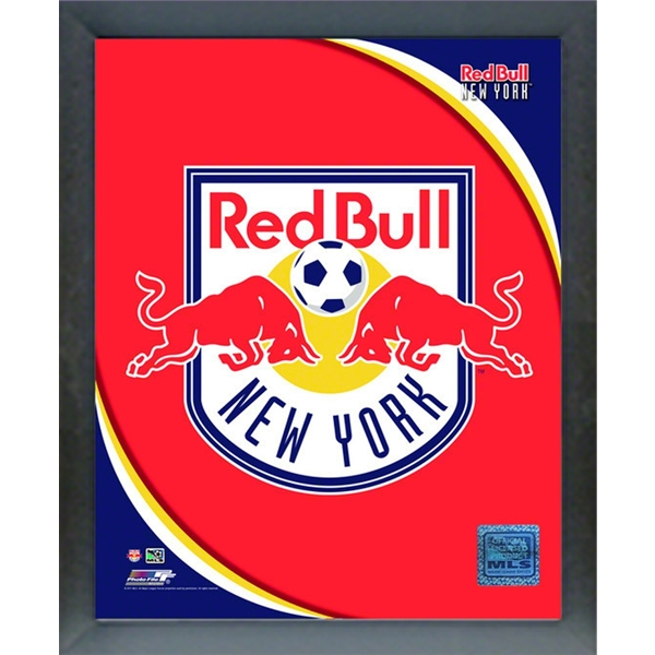 New York Red Bulls 11x14 Sport Frame
