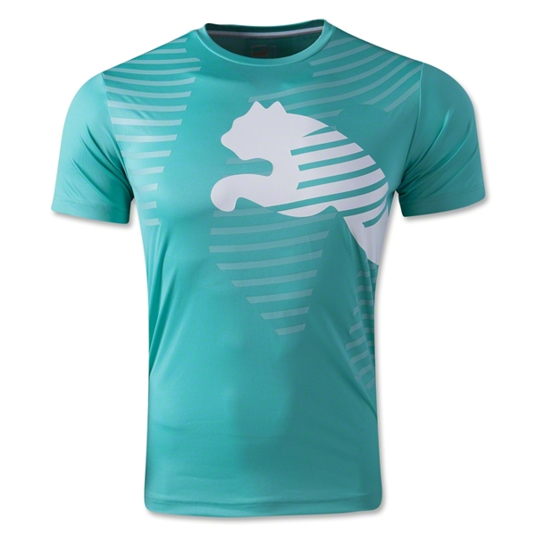 PUMA IT evoTRG Graphic T-Shirt (Teal)