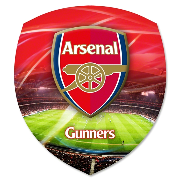 Arsenal Universal 3D Skin (Large)