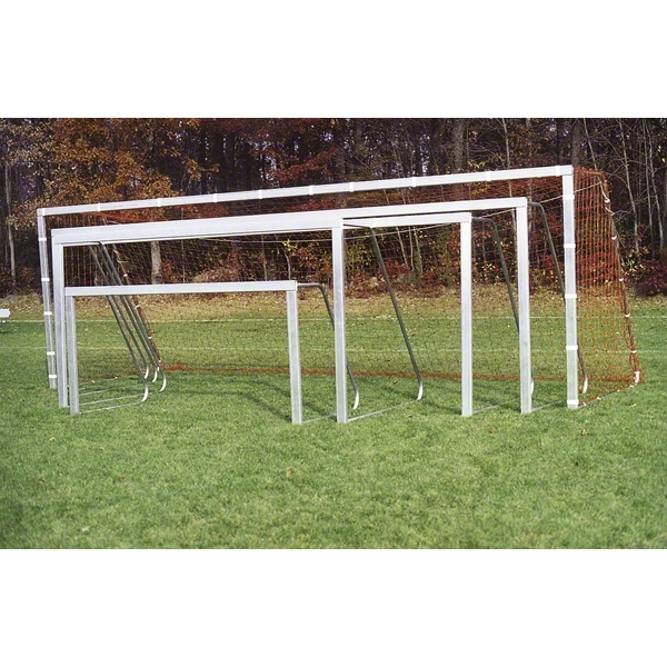Goal Sporting Goods 4X9 Recreational Goal