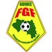 Guinea National Soccer Team