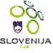 Slovenia National Soccer Team