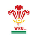 Wales National Rugby Team Logo
